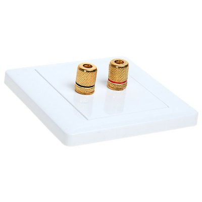 Dual Audio Female Slot Wall Panel Easily Installed -White