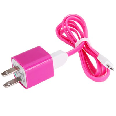 2 in 1 104cm Noodle Style Micro USB Cable with US Standard Power Adapter