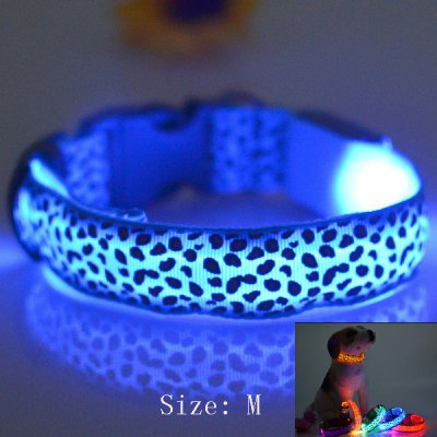 2.5cm Wide Dog Glow Flashing LED Collar
