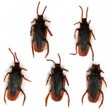 Funny Realistic Cockroach Plastic Trick Toys for April Fool's Day - 5 PCs