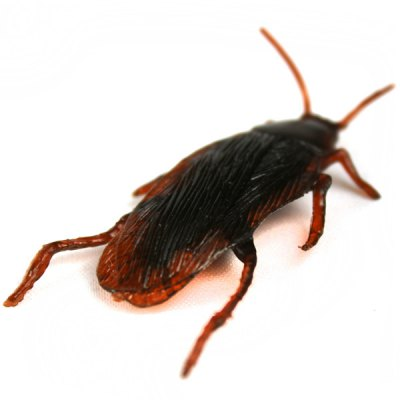 Funny Realistic Cockroach Plastic Trick Toys for April Fool