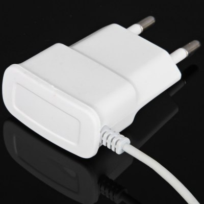 Automatically adjusts 110  -  220V Charger