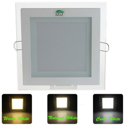Zweihnder SMD  -  5730 48 12W LEDs Dimmable Smart Sync Controlled Panel Light ( 3000  -  7000K 950Lm)