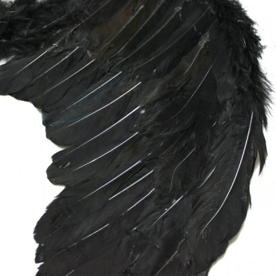 Funny Wings Design for Party / Halloween / Carnival / Costume Ball Trick Toy от GearBest.com INT