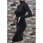 Simple Turtle Neck Long Sleeve Solid Color Slimming Women's Dress deal
