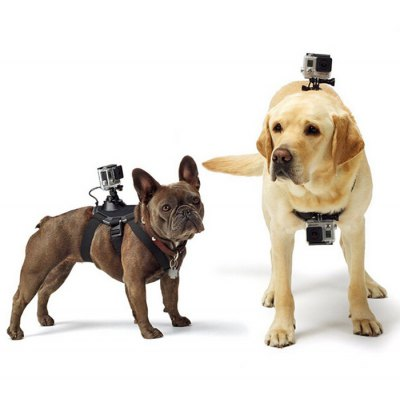 Fetch Dog Harness Belt Mount for GoPro Sports Camera Dog Chest Strap Accessories