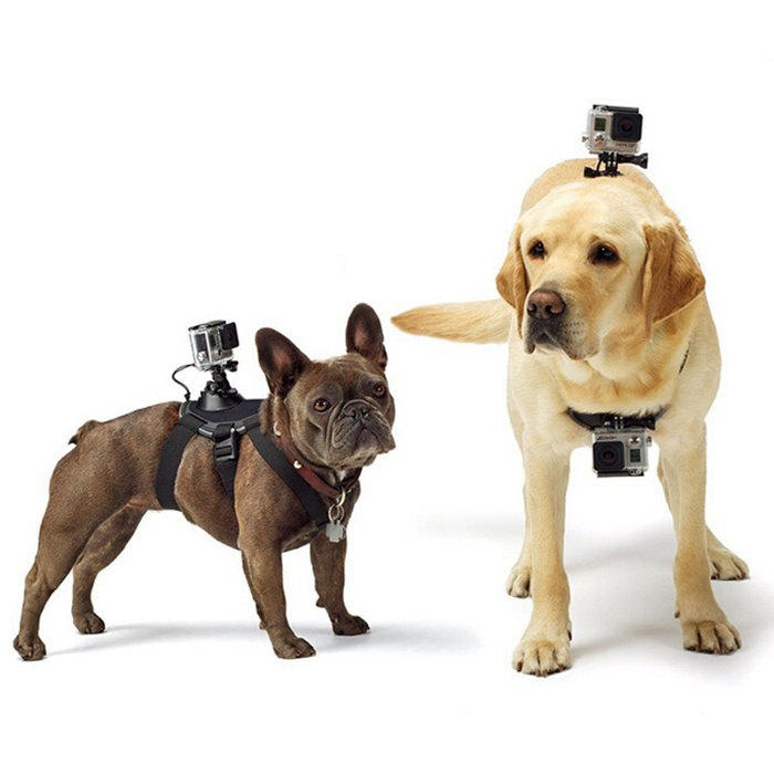Fetch Dog Harness Belt Mount for GoPro Sports Camera Dog Chest Strap Accessories 129917701