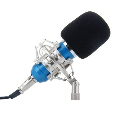 BM-700 Condenser Sound Recording Microphone and Metal Shock Mount for Radio Broadcasting Studio Voice Recording