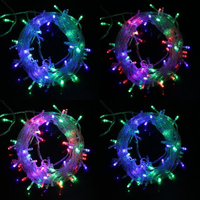 220V 6.5W 10M Flash 100-LEDs Christmas Light Strip