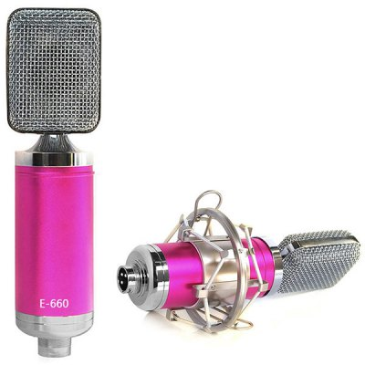 E-660 Condenser Sound Recording Microphone with Metal Shock Mount