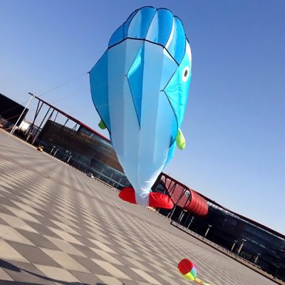 Гаджет   Outdoor Sports Entertainment 3D Huge Parafoil Giant Dolphin Kite with 2.6m Tail Kite