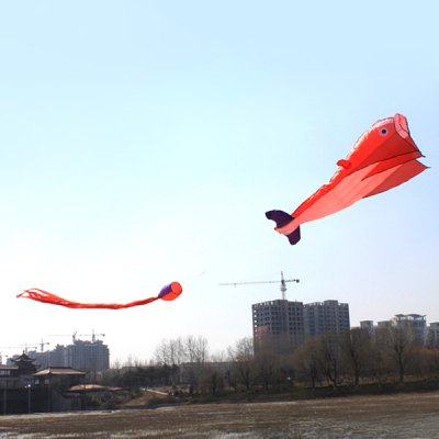 3D Huge Parafoil Giant Dolphin Kite