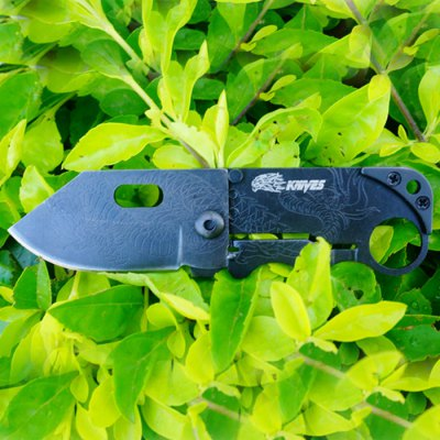 SR SR238B Vintage Folding KnifePocket Knives and Folding Knives<br>SR SR238B Vintage Folding Knife<br><br>Brand: SR<br>Type: Multitools<br>For: Adventure, Home use, Daily Use, Camping, Climbing, Hiking<br>Lock Type: Liner Lock<br>Blade Edge Type: Fine<br>Material Detail: Blade: 2Cr13, Handle: 2Cr13<br>Feature: Dragon Pattern, Line locking, Antique style<br>Blade Length: 5.0cm<br>Blade Width : 3.0cm<br>Unfold Length: 12.0cm<br>Fold Length: 6.0cm<br>Color: Black<br>Product weight   : 0.032 kg<br>Package weight   : 0.057 kg<br>Product size (L x W x H)   : 12.0 x 3.0 x 0.5 cm / 4.72 x 1.18 x 0.20 inches<br>Package size (L x W x H)  : 8.0 x 4.0 x 2.0 cm / 3.14 x 1.57 x 0.79 inches<br>Package contents: 1 x SR SR238B Folding Knife