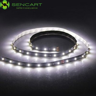 Sencart 1.25M 10W 90 SMD 3528 6000K Light Strip