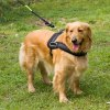 Large / Middle Size Dog  Chest Strap for sale
