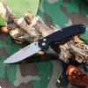 Ganzo G727M - BK Foldable Knife with Axis Lock and Clip