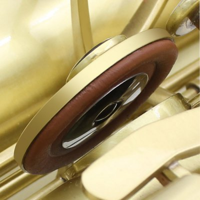 25Pcs Tenor Saxophone Leather Pads SetBrass<br>25Pcs Tenor Saxophone Leather Pads Set<br><br>For: Saxophone<br>Material: Leather<br>Package Contents: 25 x Saxophone Leather Pad<br>Package size (L x W x H): 16 x 11 x 4 cm / 6.29 x 4.32 x 1.57 inches<br>Package weight: 0.130 kg<br>Product weight: 0.076 kg<br>Type: Saxophone Leather Pad