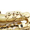 LADE WSS - 896 bE Alto Saxophone deal