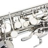 LADE WSS - 896 bE Alto Saxophone for sale
