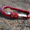 best XINDA D-shaped Mountaineering Buckle