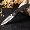 Enlan L02 Liner Lock Folding Knife