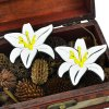 Pair of Alloy Lily Flower Stud Earrings deal
