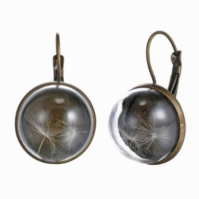 Pair of Retro Transparent Cover Round Pendant Necklace With Dandelion For Women