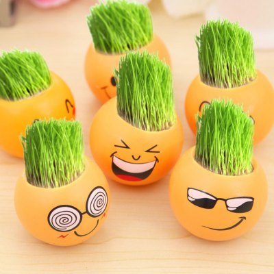 Miniature Potted Plant Grass Pot CultureGarden Decking<br>Miniature Potted Plant Grass Pot Culture<br><br>Type: Potted Plant<br>Product weight   : 0.110 kg<br>Package weight   : 0.180 kg<br>Product size (L x W x H)   : 7 x 7 x 5.6 cm / 2.75 x 2.75 x 2.20 inches<br>Package size (L x W x H)  : 10 x 10 x 8 cm / 3.93 x 3.93 x 3.14 inches<br>Package Contents: 1 x Potted Plant