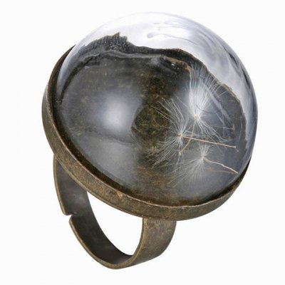 Vintage Glass Cover Dandelion Ring For WomenRings<br>Vintage Glass Cover Dandelion Ring For Women<br><br>Gender: For Women<br>Metal Type: Alloy<br>Style: Classic<br>Shape/Pattern: Floral<br>Diameter: 1.7CM<br>Weight: 0.04KG<br>Package Contents: 1 x Ring