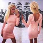 Sexy Jewel Neck Long Sleeve Pure Color Zippered Bodycon Ladies Mini Dress deal