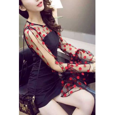 Womens Simple Voile See-Through Long Sleeve Polka Dot Jewel Neck DressWomens Dresses<br>Womens Simple Voile See-Through Long Sleeve Polka Dot Jewel Neck Dress<br><br>Style: Sexy &amp; Club<br>Material: Polyester<br>Silhouette: Sheath<br>Dresses Length: Mini<br>Neckline: Jewel Neck<br>Sleeve Length: Long Sleeves<br>Pattern Type: Polka Dot<br>With Belt: No<br>Season: Spring,Summer,Fall<br>Weight: 0.37KG<br>Package Contents: 1 x Dress
