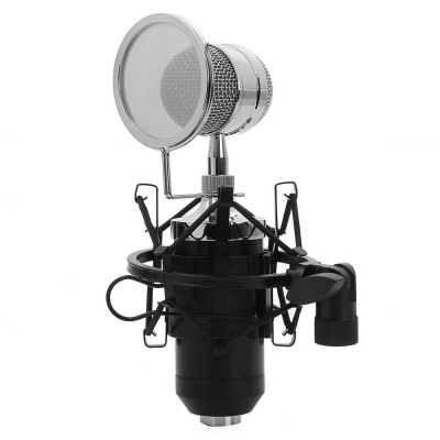 BM - 8000 Uni-directional Condenser Microphone