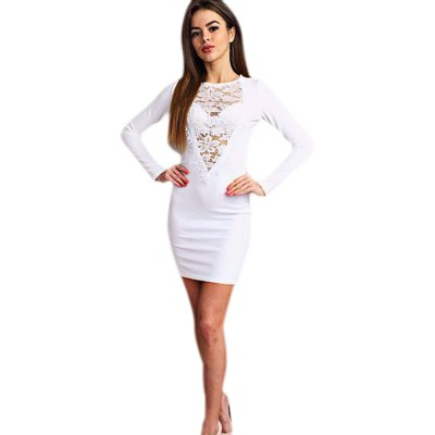 Elegant Jewel Collar Long Sleeve Lace Work Pure Color Bodycon Women Midi Dress