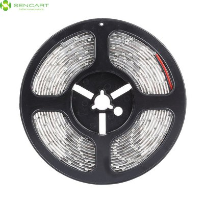 Sencart 5M 145W 300 x SMD 5630 Waterproof LED Light StripLED Strips<br>Sencart 5M 145W 300 x SMD 5630 Waterproof LED Light Strip<br><br>Actual Lumens: 12000Lm<br>Brand: Sencart<br>CCT/Wavelength: 3000-3500K,6000-6500K,6500K<br>Chip Brand: Epistar<br>Features: IP-65, Waterproof, Low Power Consumption, Cuttable<br>Input Voltage: DC12<br>LED Type: SMD-5630<br>Length: 5M<br>Material: Silicone<br>Number of LEDs: 60 x SMD 5630 / M<br>Optional Light Color: White,Red,Blue,Green,Warm White,Cool White<br>Package Contents: 1 x Sencart LED Strip Light<br>Package size (L x W x H): 16 x 2 x 2 cm / 6.29 x 0.79 x 0.79 inches<br>Package weight: 0.230 kg<br>Product size (L x W x H): 500 x 1 x 0.3 cm / 196.50 x 0.39 x 0.12 inches<br>Product weight: 0.150 kg<br>Type: LED Strip