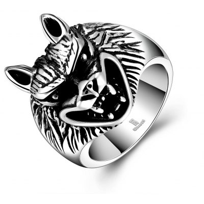 R169-10 Popular 316L Stainless Steel Ring for Man