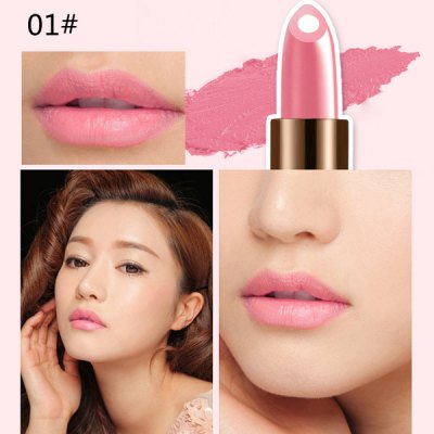 12 Colours Natural Snail Filling Hydrated Glossy Moisturizing Lipstick