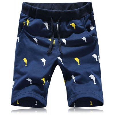 Funny Cartoon Dolphin Print Straight Leg Lace-Up Shorts For Men