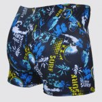 cheap Printing Waterproof Quick-drying Men's Boxers Swimming Trunks