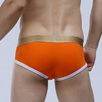 Golden Letter Print Linellae U Pouch Design Band Briefs For Men deal