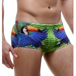 cheap Parrot and Letter Print Color Block Swimming Trunks For Men