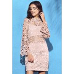 cheap Alluring High Neck Flare Sleeve Guipure Lace Women's Pink Dress