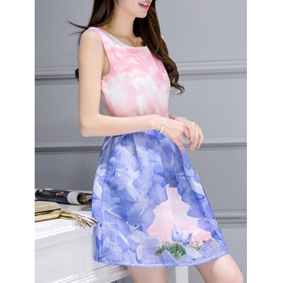 Simple Style Women's Belted Sleeveless Organza Swan Print Dress