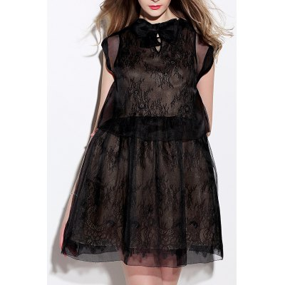 Sheer Mesh Dress and Lace Dress Twinset