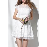 Fit and Flare Sheer Mesh Yoke Lace Dress