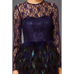 Lace Bodice Feather Prom Dress deal