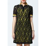 Polo Collar Lace Dress and Tank Top Twinset