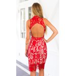 Alluring Stand Neck Cut-Out Back Women's Midi Lace Dress deal