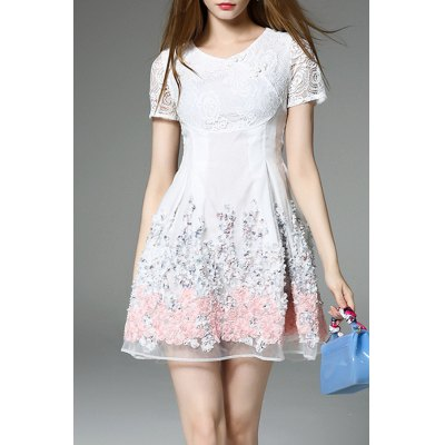 Lace Panel Short Flare Dress