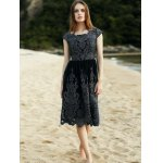 Stylish Scoop Neck Short Sleeve Lace Women's Midi Dress deal
