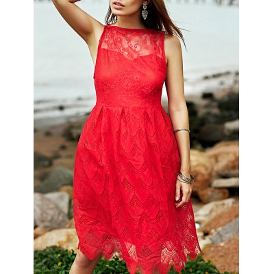 Scallop Floral Lace Fit and Flare Dress